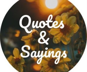 11000 Quotes,Sayings & Status APK For Android