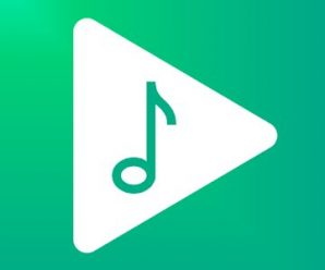 Musicolet Music Player [No ads] APK For Android